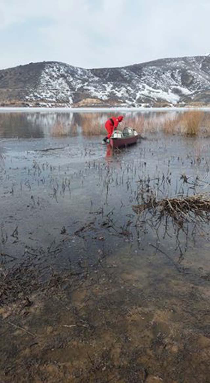 Perra rescatada de un lago congelado