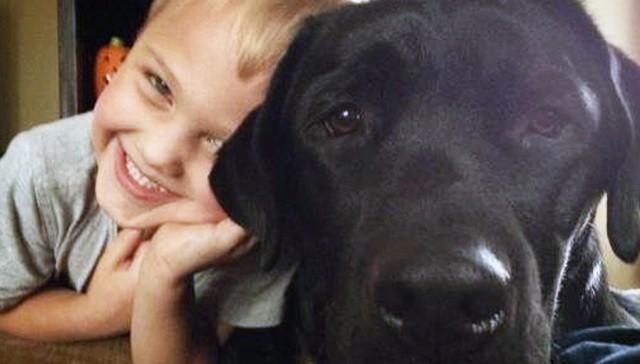 Perro cuida de niño con diabetes tipo 1