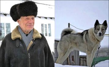Perro salva a su humano que cayó en un pozo congelado