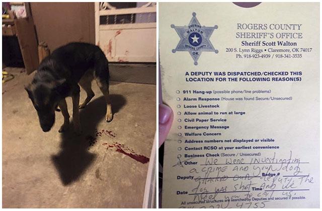 Policías dispararon a un perro en su propia casa