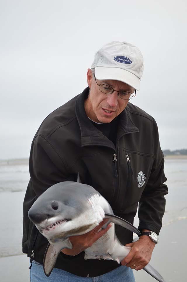 Salvó a un tiburón