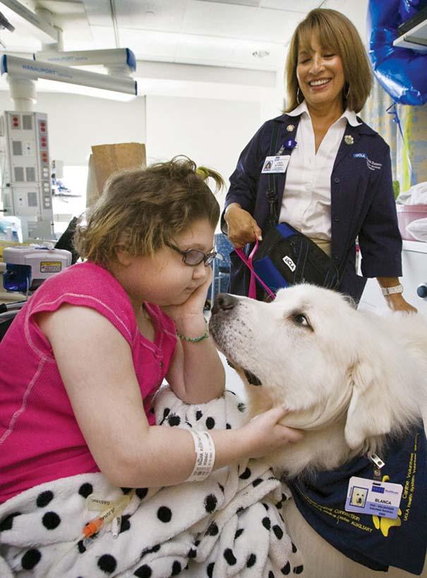 Hospital permite entrada de animales