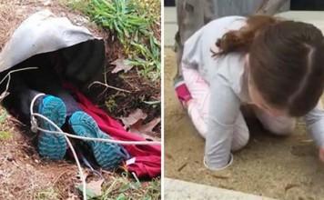 Niños rescatan animales