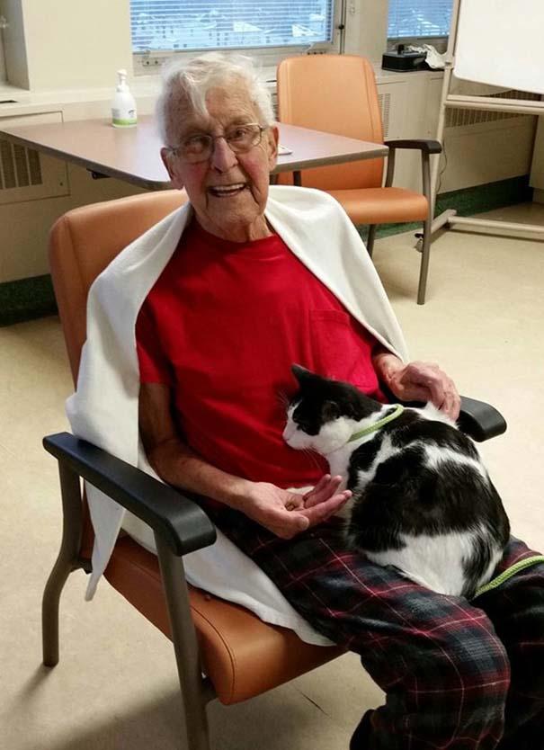 mascotas visitan pacientes en este hospital