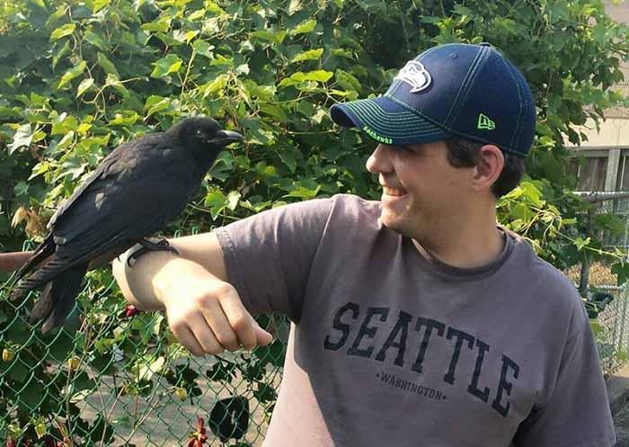 Cuervo no se aleja de la persona que lo rescato
