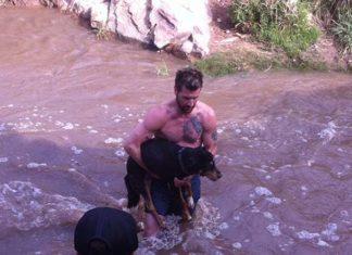 Heroe musculoso salva a una perra de ahogarse