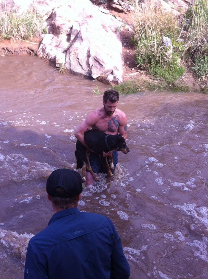 Heroe salva a una perra de ahogarse en Utah