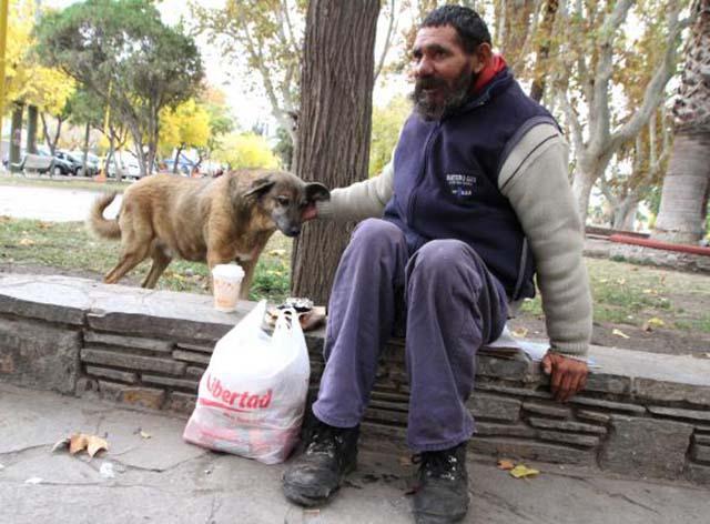 Hombre es salvado por su perro en un incendio