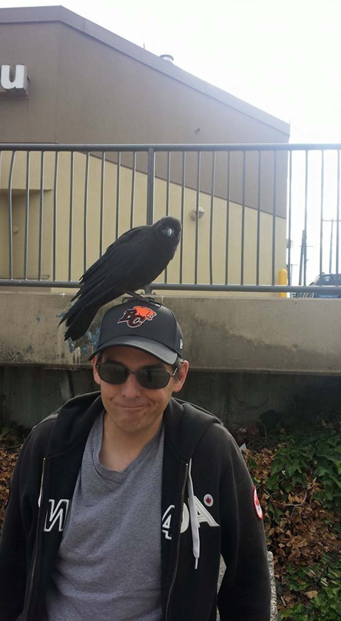 Hombre y cuervo