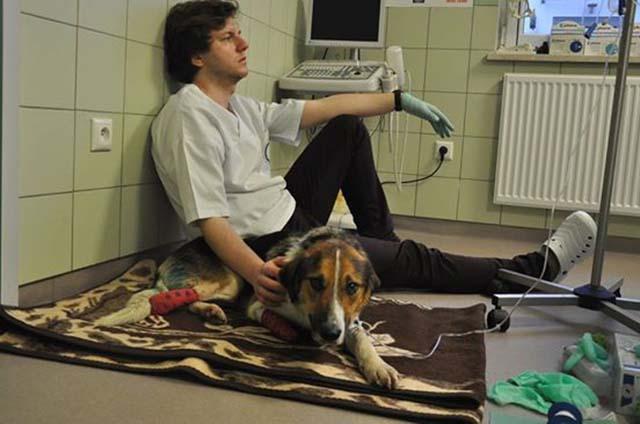 Jakub Kotowicz cuidando a Forest