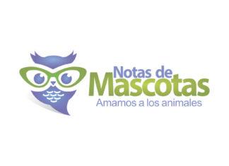 Notas de Mascotas