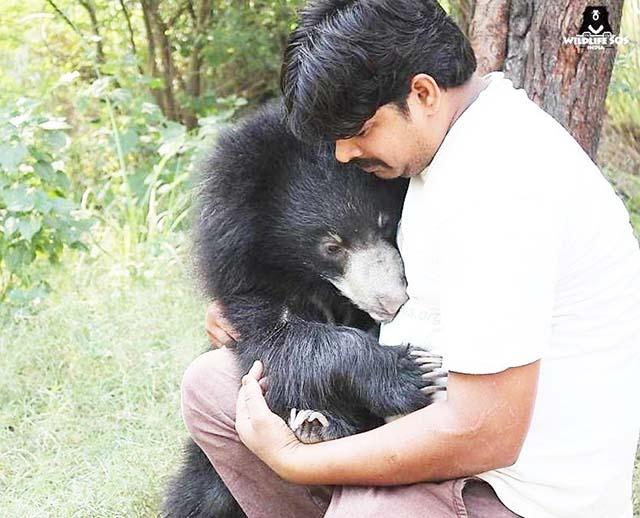 Oso abraza a su cuidador