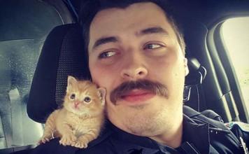 Policía encuentra amigo con bigotes como él