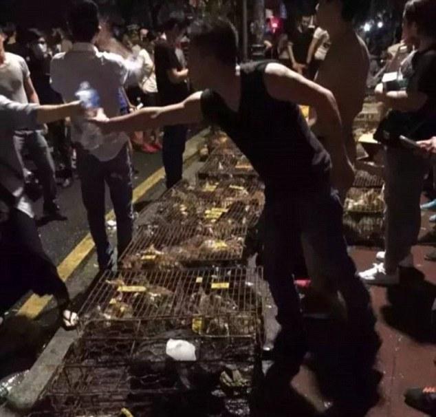 Activistas rescatan mas de 400 animales con destino al festival de Yulin