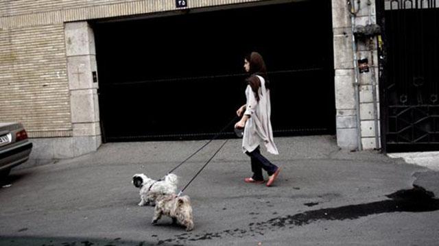 En Irán confiscan las mascotas de las familias