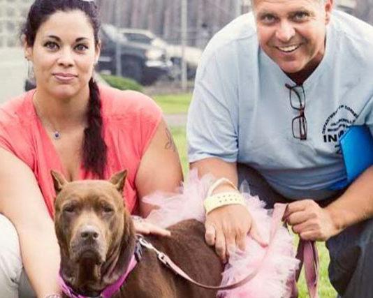 Familia adopto a dos perros que están muriendo