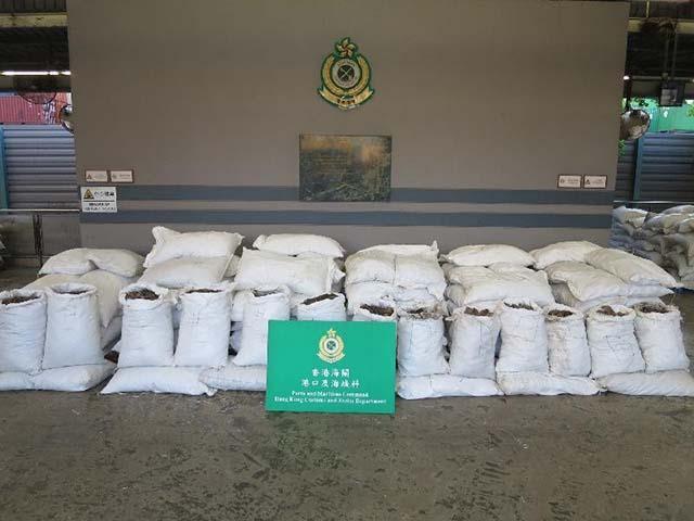 Funcionarios de aduanas detuvieron el cargamento de escamas de pangolín que venia de Camerún