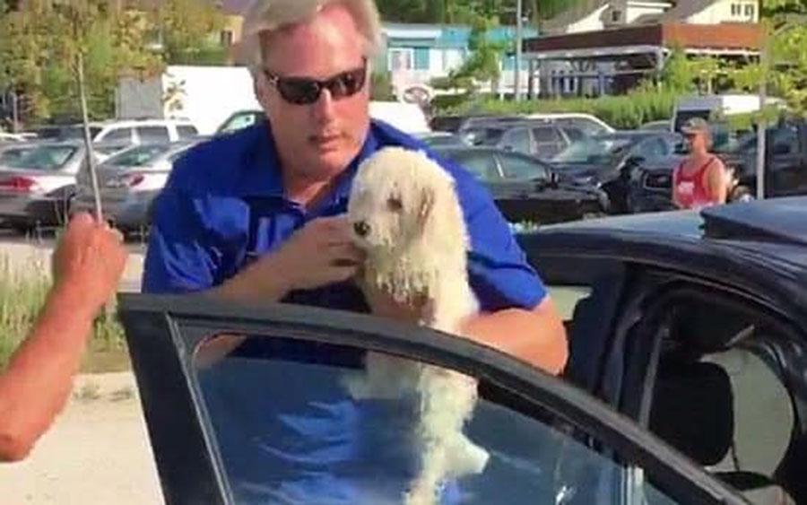 Hombre rescata a un perro