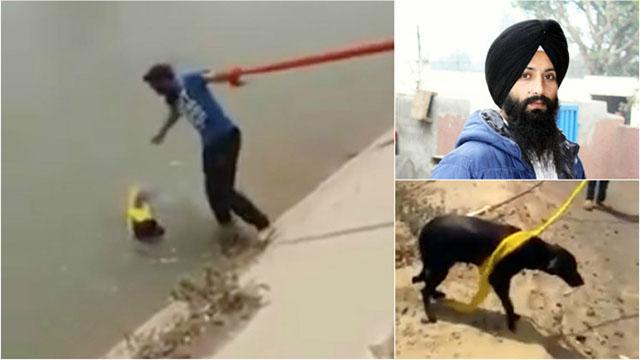 Hombre sij se quito el turbante para salvar a un perro de ahogarse