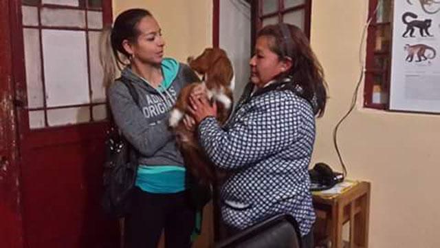 Mujer entrega el perro voluntariamente