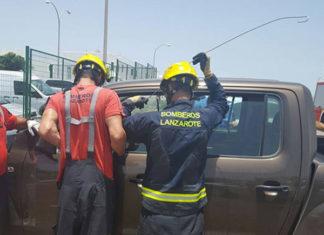 Perro encerrado en un auto caliente fue rescatado por la policia y los bomberos