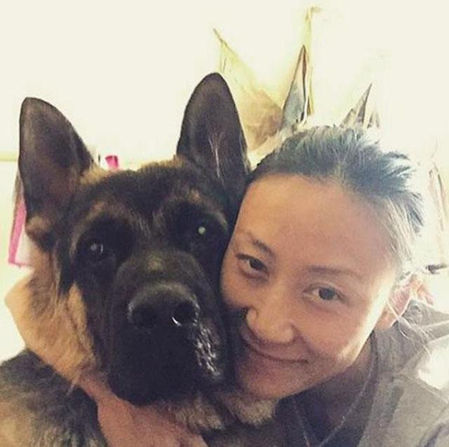 Perro rescatado de matadero