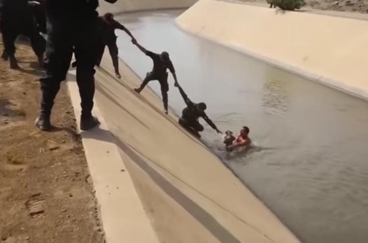 Perro rescatado de un canal