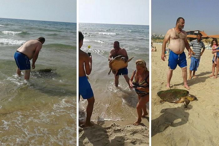 Personas sacaron tortuga del mar para tomarse fotos con ella