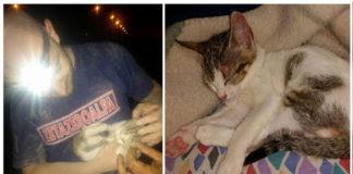 Rescataron a una gata de 2 meses enterrada debajo de escombros
