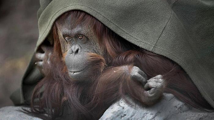 Sandra en el Zoologico de Buenos Aires