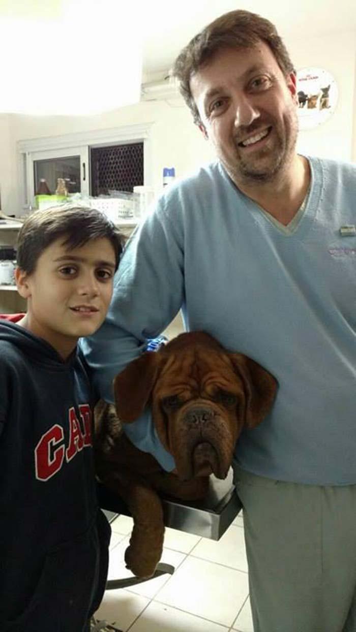Athos y su veterinario