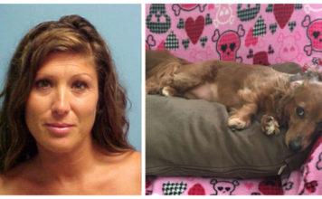 Mujer es acusada de robar y abandonar en un refugio al perro de su exnovio