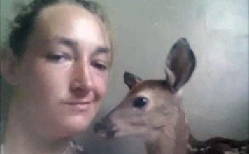 Mujer robó ciervos bebés del bosque y se los llevó a casa