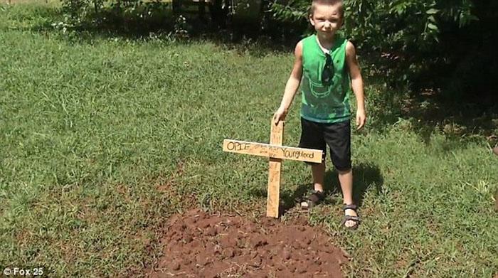 Niño sufre la muerte de su perro
