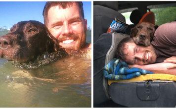 Perro con cáncer realiza su último viaje con su humano