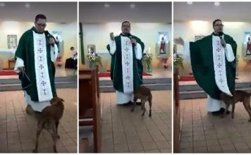 Perro juguetón se divierte con la sotana del sacerdote en plena misa