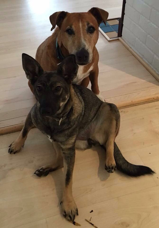 Saskia y Caesar