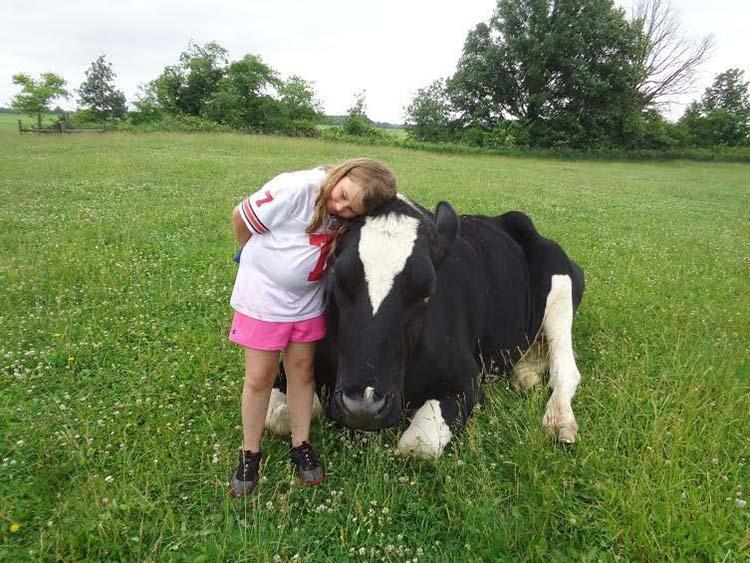 Vaca amorosa