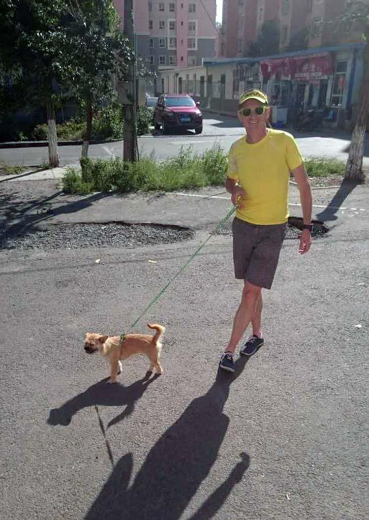 Gobi pasea con collar