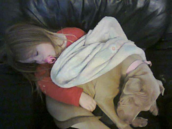 Madisson duerme con Darla
