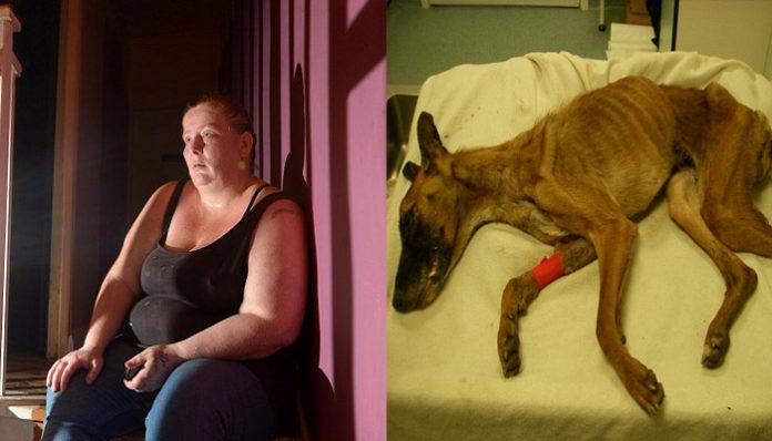 Mujer es declarada culpable por causar sufrimiento innecesario a una perra en estado de desnutrición