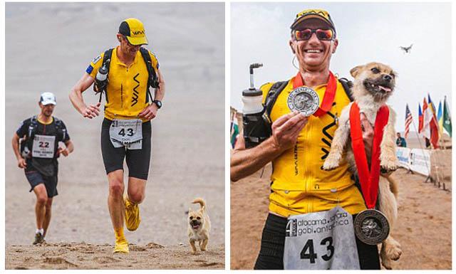Perrita entabla amistad con un atleta en una maratón en China