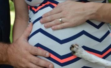Perro se une a la sesión de fotos de maternidad de su humana