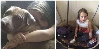 Policía incauta al perro de una niña con autismo porque parece un pit bull