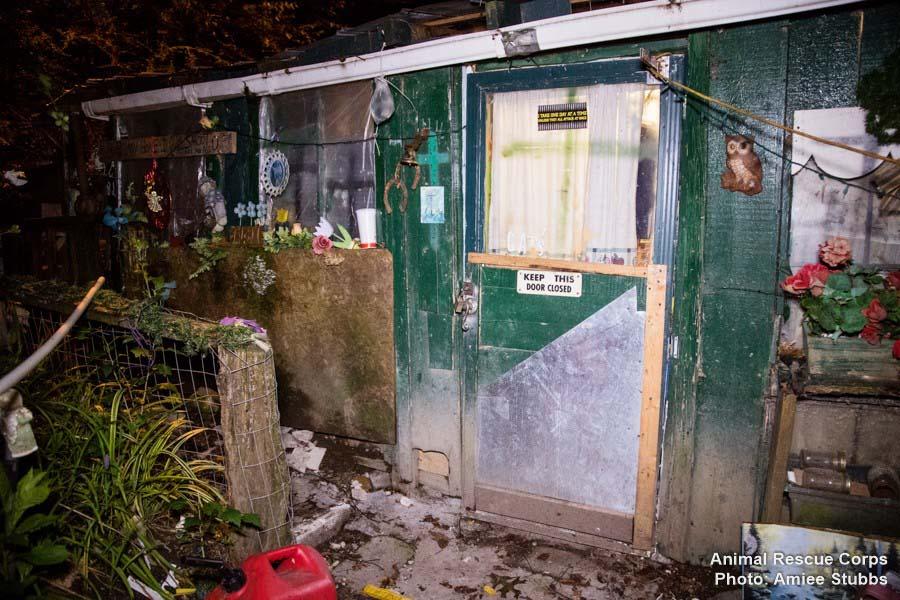 Rescataron animales que vivían en pésimas condiciones