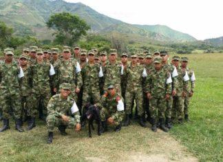 Soldados Colombianos rescataron a un perro