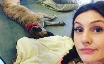 Trabajadora de un refugio está viviendo en la perrera para ayudar a un perro a ser adoptado