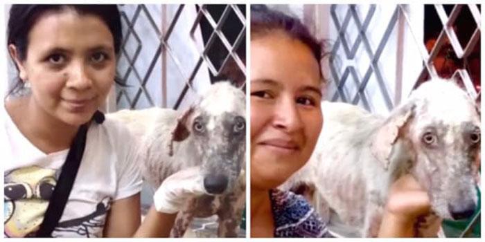 mujeres salvaron a un perro