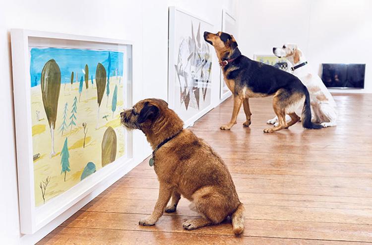 perros apreciando arte