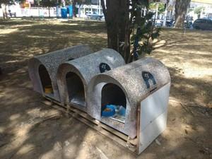 Casas para perros de la calle